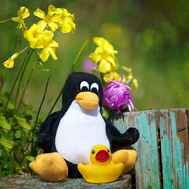 Google Penguin 2.0 Telah Bermula!